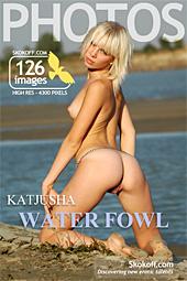 Skokoff - Katjusha (Angelika B) - Water Fowl